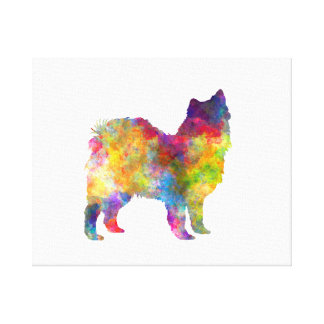 Swedish Lapphund in watercolor Canvas Print