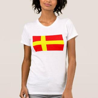 Swedish speaking Finns ethnic flag scandinavia T-Shirt