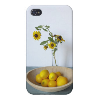 Sweet and Sour Still Life iPhone 4/4S Case