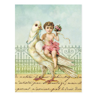 Sweet Angel Cherub in Pink on Vintage White Dove Postcard