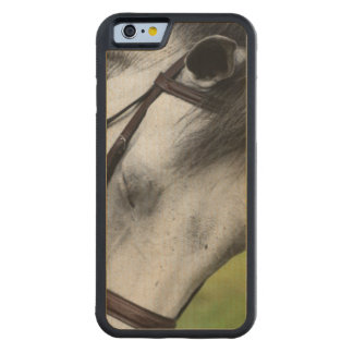 Sweet Appaloosa Horse Maple iPhone 6 Bumper Case