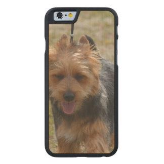 Sweet Australian Terrier Carved® Maple iPhone 6 Slim Case