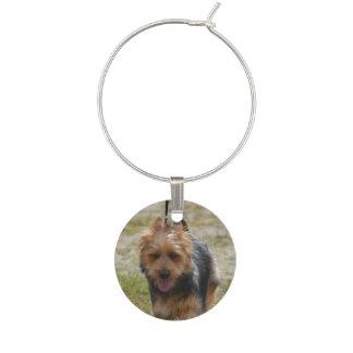 Sweet Australian Terrier Wine Charm