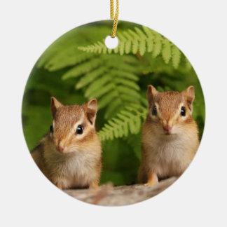 Sweet Baby Chipmunk Siblings Ceramic Ornament
