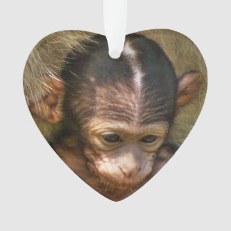 sweet baby monkey ornament