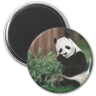 Sweet Bamboo Panda Bear magnet