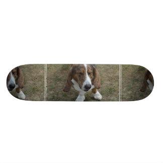 Sweet Basset Hound Custom Skateboard
