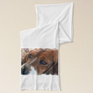 Sweet Basset Hound Dog Scarf
