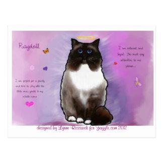 Sweet Beautiful Ragdoll Postcard