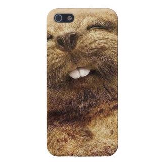 Sweet Beaver iPhone 5 Covers