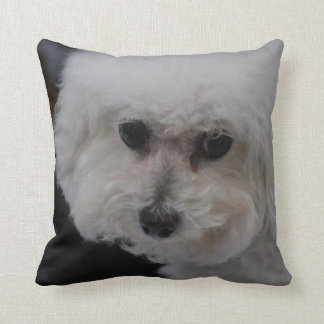 Sweet Bichon Frise Throw Pillow