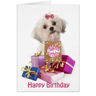 Sweet birthday card dog Maltese and present