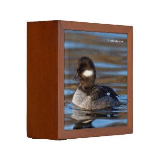 Sweet Bufflehead Duck on Sunlit Waters Desk Organizer