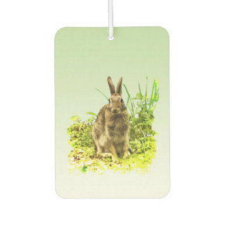 Sweet Bunny Rabbit in Grass Air Freshener