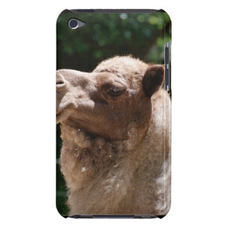 Sweet Camel iPod Touch Covers
