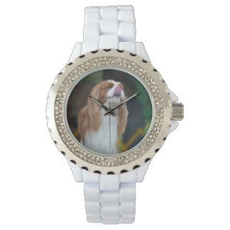 Sweet Cavalier King Charles Spaniel Watch