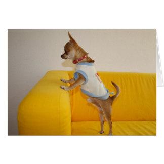Sweet Charlie Chihuahua Card