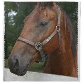 Sweet Chestnut Horse Set of Four Napkins