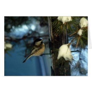 Sweet Chickadee Card
