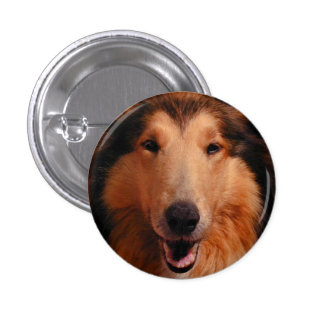 Sweet Collie Too 1 Inch Round Button