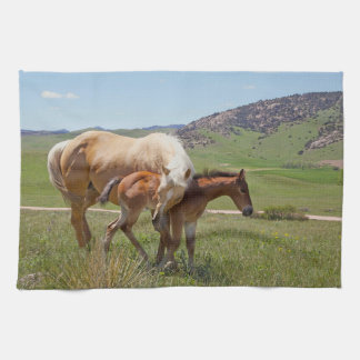 Sweet Comfort Horse Kitchen Towel