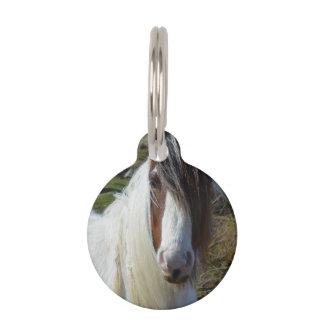 Sweet Connemera Pony Pet ID Tag