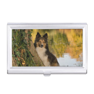 Sweet Cute Dog Case For Business Cards