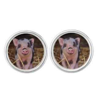 Sweet Cute Pig Cufflinks