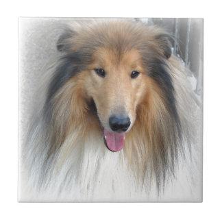 Sweet Dog Ceramic Tiles