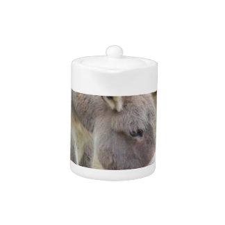 Sweet Donkey, Animal Grey, Horse Family