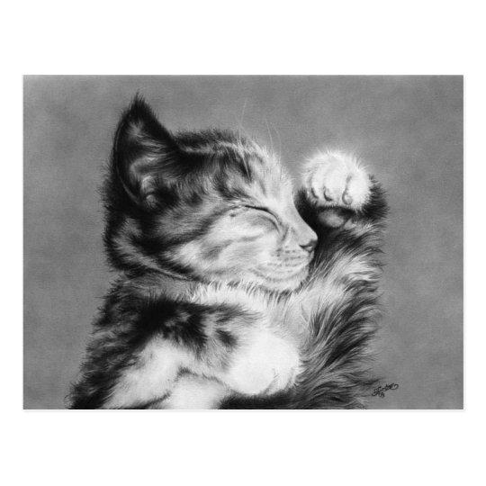 Sweet dreams little kitten Postcard