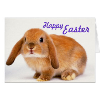 Sweet Easter Card with Bunny