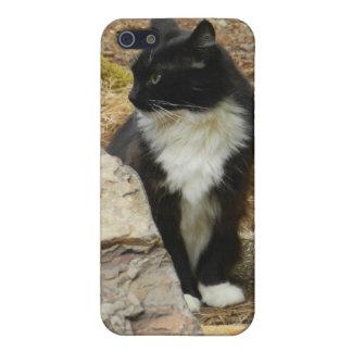 Sweet Feral Tuxedo Cat iPhone 5 Case