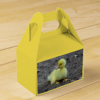 Sweet Fluffy Duckling Yellow Favor Box