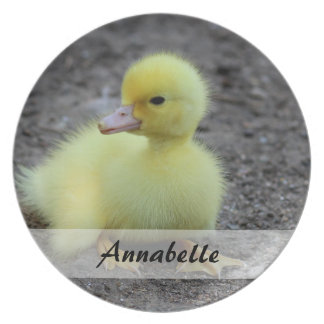 Sweet Fluffy Duckling Yellow Plate