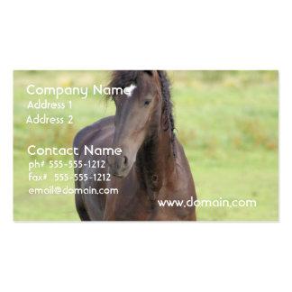 Sweet Friesian Horse Business Cards