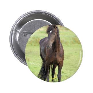 Sweet Friesian Horse Button