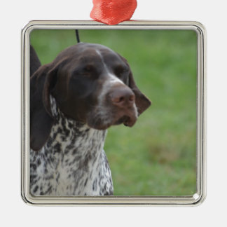 Sweet German Shorthaired Pointer Silver-Colored Square Ornament