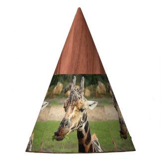 sweet giraffe. party hat