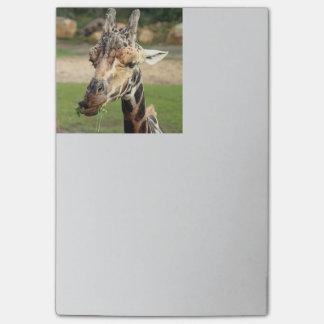 sweet giraffe. post-it notes