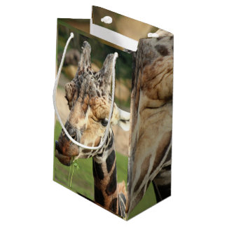 sweet giraffe. small gift bag