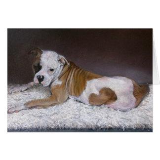 Sweet Heart, American Bulldog Card