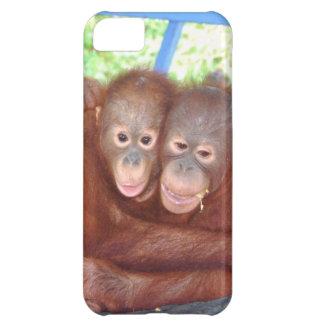 Sweet Hug Orangutan Friends Case For iPhone 5C