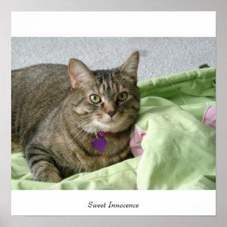 Sweet innocence poster