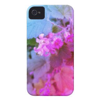 sweet iPhone / iPad case