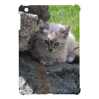 Sweet kitten focus iPad mini covers