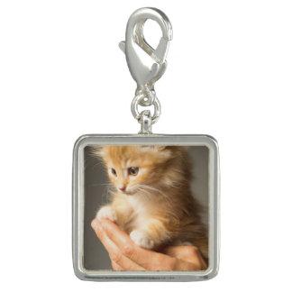 Sweet Kitten in Good Hand Charm