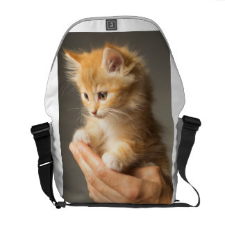 Sweet Kitten in Good Hand Commuter Bag