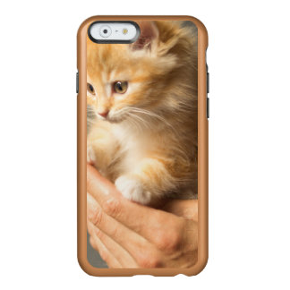 Sweet Kitten in Good Hand Incipio Feather® Shine iPhone 6 Case