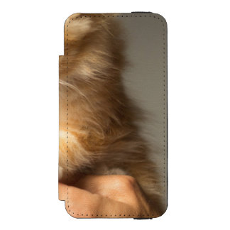 Sweet Kitten in Good Hand Incipio Watson™ iPhone 5 Wallet Case